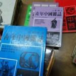 【2010年华教节特辑】国阵与民联的多元文化政策  /贾儒